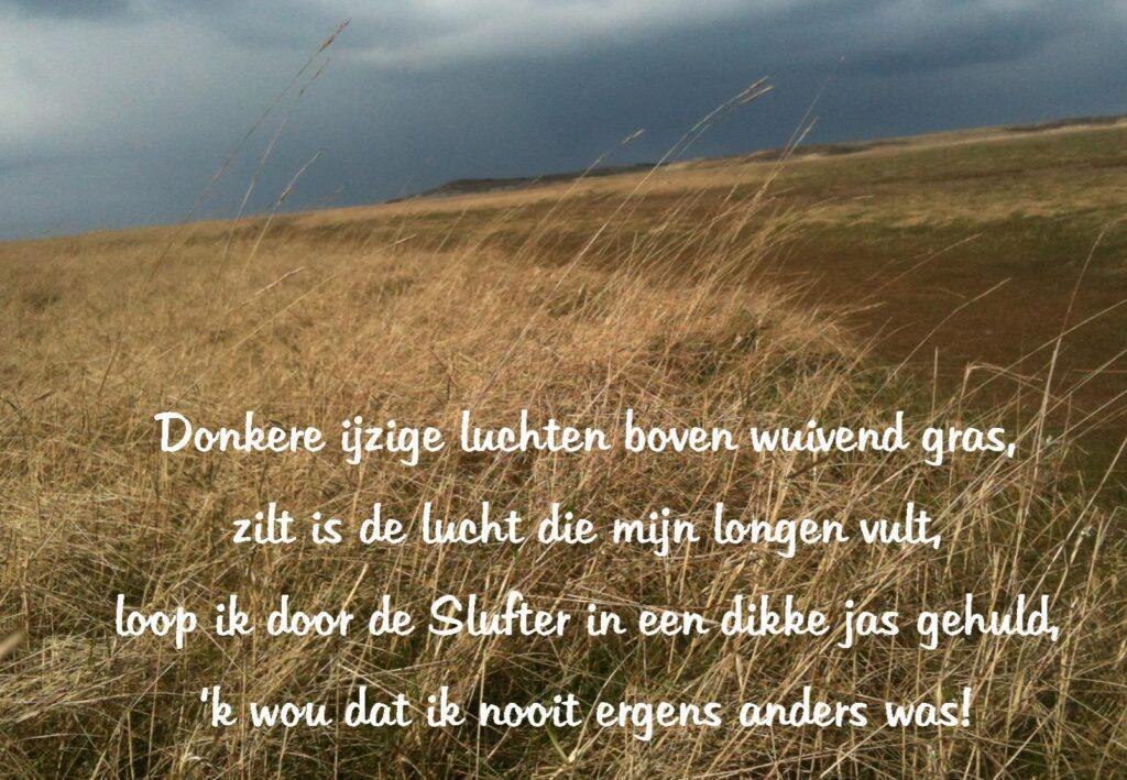 Texel gedichten