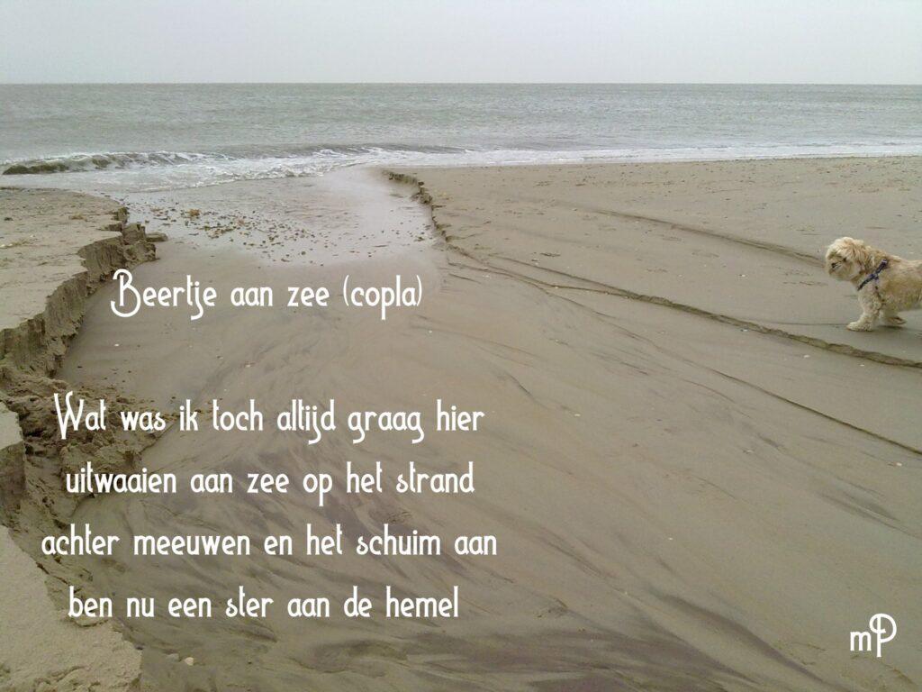 Texel gedichten mees peet